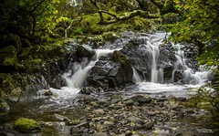 On the Rocks (Carl Yeates) Tags: canon 550d cumbria river
