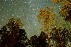 Starry night (jessburd6) Tags: stars starrynight pennsylvania mountains photography night longexposure nature nikon nikkor d3200