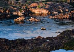 O pescador. Ele está aí! Rio São Francisco, Piranhas - Alagoas (Marcos Simanovic) Tags: river rio riosãofrancisco piranhas alagoas