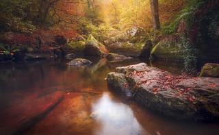 L'automne en terre bretonne