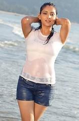 Indian Actress Ramya Hot Sexy Images Set-1 (49)