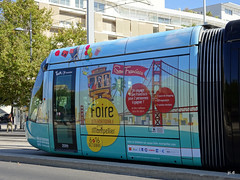 Montpellier - tram ligne 1 (jc.d the cycling photographer) Tags: languedocroussillonmidipyrénées hérault montpellier montpelliermétropoleméditerranée ruefoch ruegambetta coeurdeville tramway tram tam