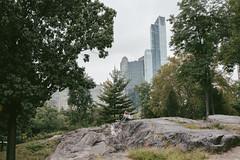 Central Park NYC (instagram.com/lanolan) Tags: 35mm 35mmf2 50mmequiv centralpark day fuji fujifilm fujifilmxpro2 fujinon fujinonxf35mmf2 manhattan newyork newyorkcity newyorknewyork ny nyc outdoors outside park thebigapple uppereastside xpro2
