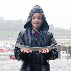 "Keir Tweedale - Garfish • <a style=""font-size:0.8em;"" href=""http://www.flickr.com/photos/113772263@N05/36681029503/"" target=""_blank"">View on Flickr</a>"