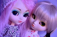 Best Friends | Pullips Prunella & Paja (·Kumo~Milk·^^) Tags: pullip pullips prunella paja aqua hana rewigged wig rechipped eyechips eyelashes obitsu doll dolls junplanning groove papinwig 2005