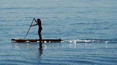 paddleboard wake
