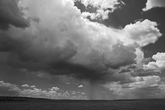 Summer storms in New Mexico, USA. (cbrozek21) Tags: cloud rain storm weather newmexico pentaxart blackandwhite monochrome landscape sky plains ngc