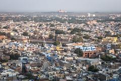 Rajasthan - Jodhpur - blue city- Mehrangharh Fort-4