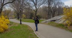 62382-New-York (xiquinhosilva) Tags: 2016 centralpark manhattan nyc newyork newyorkcity park theramble therambleandthelake usa unitedstates us