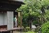CAT-20170906-094031 (thinkcat) Tags: mitoshi ibarakiken 日本 jp
