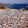 Venta Alfardía, Andalusia, Spain (pom.angers) Tags: 100 200 300 400 canoneos400ddigital april 2017 andalusia spain europeanunion sea ocean atlanticocean beach 5000