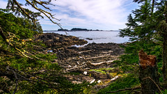 Rugged View (Sworldguy) Tags: ucluelet southcoast britishcolumbia wildpacifictrail ocean barkleysound cedar landscape sea shoreline nature pacificrimnationalpark canada vancouverisland westcoast ecosystem bc shorelines tourisim cloudy scenic rugged rocky coastal nikon d7000 dslr seascape