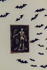 Halloween Party - Sigma 18-35mm Art - Canon 7D Mark II (abysal_guardian) Tags: halloween party decoration 2017 indoor ghost skull dryice pumpkin blood bloody bat canon eos 7dmarkii 7dm2 7dmk2 7d mark ii sigma1835mmf18dchsmart sigma 1835mm dc hsm art f18