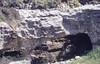 Window, arch, iris, limestone. Singing Sands, north west Eigg (Mary Gillham Archive Project) Tags: 1987 39345 eigg geology iris island may1987 nm471899 planttree scotland unitedkingdom gb