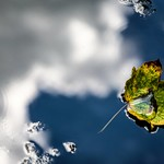 Autumn, between clouds and blue sky thumbnail