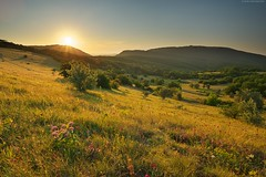 Mountain landscape nature. (Igor Goncharenko) Tags: background beautiful blue clean ecology environment fresh glacier grand grass green heaven height horizon landscape lawn light meadow mountain national nature outdoor panorama park peak plain range rock rural scenery scenic season shine sky spring summer sun sunlight sunny sunrays sunshine travel flower yellow wood
