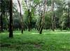 Chandrima Uddan (The moon park) (Sadot Arefin) Tags: canon powershot sx50hs canonpowershotsx50hs chandrimauddan dhaka bangladesh pointshoot