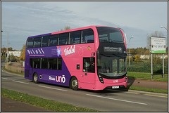 UNO 293, Edgar Mobbs Way (Jason 87030) Tags: uon uno uni campus parkcampus edgarmobbsway northampton northants northamptonshire mmc yz67vfy 293 new pink purple bee flower viollet 19 2017 october saints weather color colour wheels decker everyone publictransport university