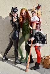 DSC_0730 (Randsom) Tags: newyorkcomiccon 2017 october7 nycc comic convention costume nyc javitscenter dccomics superhero supervillain villainess harleyquinn harlequin catwoman villain poisonivy arkham gotham cosplay trio girl woman female