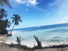 Isla Saona 🌴 (221192) Tags: arena blue azul skyblue celeste oceano ocean mar playa beach island puntacana cana punta republicadominicana dominicana republica isla saona islasaona