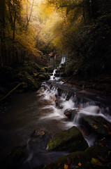 Autumn light (ThomasJacquemotPhotographie) Tags: nikond7000 nikon nisi nisifilter automne autumn eau water lumiere light cascade waterfall poselongue longueexposure