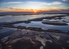Preserved Oil Field (PhotonLab) Tags: wetlands oaktree oak ocean beach lowlight sony a7 huntington 714 1503 ca cali socal outdoor sky tree plant bolsa chica sunset sun clouds cloudscape landscape water aerialphotography drone dronephotography oil oilfield oilwell