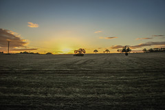 Glowing Sky. (markgibson8) Tags: droitwich worcestershire worcester sunset sun clouds sky orange autumn photography photograph canon 550d uk england fields landscape britain tree trees follow for