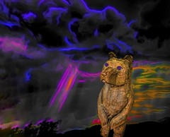 The Inner Bear (Rusty Russ) Tags: wood carving bear deep thought sunset sky cloud imagination what if colorful day digital graffiti window flickr country bright happy colour eos scenic america world beach water red nature blue white tree green art light sun park landscape summer city yellow people old new photoshop google bing yahoo stumbleupon getty national geographic creative composite manipulation hue pinterest blog twitter comons wiki pixel artistic topaz filter on1 image