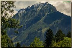 Région de Grindelwald - Canton de Berne - Suisse (jamesreed68) Tags: alpes mountain alps suisse berne oberland schweiz nature paysage
