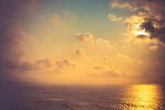 Golden sunset (Ro Cafe) Tags: biarritz lensbaby sunset sky clouds sea golden soft softfocus selectivefocus edge 80 nikond600 autumn