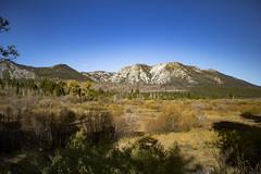 Lake Tahoe, California (leiahewitt) Tags: laketahoe taylor creek california mountains autumn fall wilderness landscape