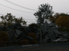 Rock | Depth of Field (Brandon ProjectZ) Tags: watchdogs chicago windy rain overcast trees atmospheric