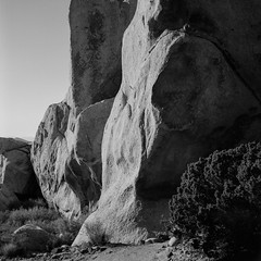Granite (ADMurr) Tags: ca desert granite joshua tree np national park rollieflex 28 f fuji zeiss planar daa599 acros 6x6 square mf medium format