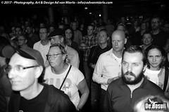 2017 Bosuil-Het publiek bij Ian Siegal 6-ZW