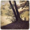 Foggy Lake (karen axelrad (karenaxe)) Tags: berlin iphoneography landscape maximuslxix sergio hipstamatic