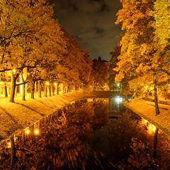 I like my autumn at night (MarxschisM) Tags: riga latvia autumn park night yellow golden xt1 samyang21mm