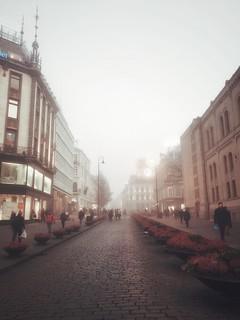 Oslo | VSCO Preset V6
