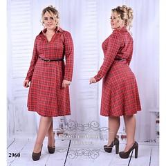 Платье-рубашка большой размер красный+клетка (arrkareeta) Tags: одежда платье dress woman 2016 красный red 11 2012