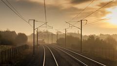 Early Morning (sdupimages) Tags: train light kent javelin rail road mist brouillard landscape paysage