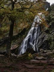 Waterfall (jim2302) Tags: powerscourt waterfall autumn tree water river leaves orange park landscape forrest grass rock f22 17mm 18 olympus longexposure long exposure