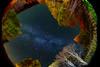 DSC03670_1_G+_1200 (bianka.spindler) Tags: milchstrasse langzeitbelichtung landschaft nachtaufnahme schweiz grimselpass nachthimmel sterne universum nightshot night view long landscape milky way switzerland swiss grimsel street forest sonya7r canon 8 15 mm metabones