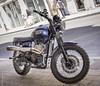 Triumph Scrambler 900 - La Rochelle (Giancarlo - Foto 4U) Tags: c2017 d810 giancarlofoto nikon larochelle triumph scrambler 900 moto motocycle