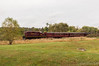 Lahaska (Dan A. Davis) Tags: newhopeivyland nhi railroad locomotive train newhope lahaska buckingham buckscounty passengertrain tourist gp9u fall foliage