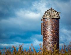 I love this old silo. (browtine1) Tags: silo farm kansas agriculture abandoned