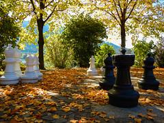 herbstliches Schach (schasa68) Tags: austria salzburg salzkammergut fuschl seepromenade schach autumn herbst herbststimmung laub blätter outdoor loveaustria bunt farben farbenfroh light park baum tree