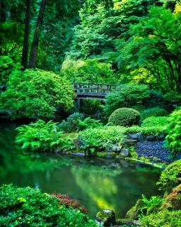 Japanese Garden 4124 A
