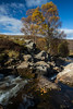 Allt bail'a'mhuilinn (GlasgowPhotoMan) Tags: perthshire perthkinross alltbailamhuilinn autumn autumnalcolours glenlyon bridgeofbalgie benlawers fortingall aberfeldy scotland scottishhighlands river water waterfall trees