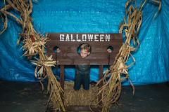 Halloween-2017 (77 of 173)
