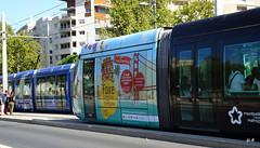 Montpellier - tram ligne 1 (jc.d the cycling photographer) Tags: languedocroussillonmidipyrénées hérault montpellier montpelliermétropoleméditerranée ruefoch ruegambetta coeurdeville tramway tram tam