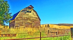 NO TRESPASSING (Irene2727) Tags: barn building woodenbuilding structure nature tree fence bluesky colors outside scape landscape pano panorama countryside rural